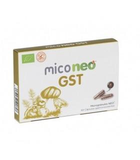 MICONEO-GST