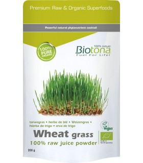 WHEAT-GRASS-HIERBA-DE-TRIGO