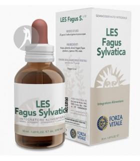LES Fagus Sylvatica (Haya) ·  Forza Vitale · 50 Ml