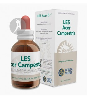 LES Acer Campestris (Arce) · Forza Vitale · 50 Ml