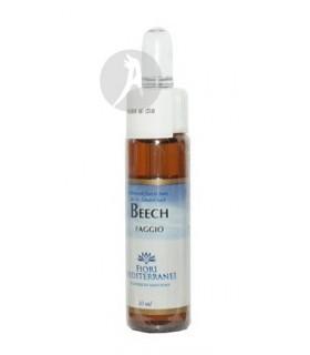 FM Beech (Haya) · Forza Vitale · 10 Ml