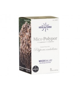 MICO-POLYPOR