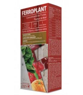 Ferroplant Solucion Oral · DietMed · 250 ml
