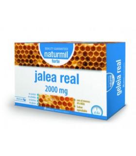 Jalea Real Forte 2.000 mg · Dietmed · 20 ampollas