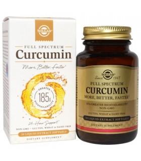 CURCUMIN-SOLGAR