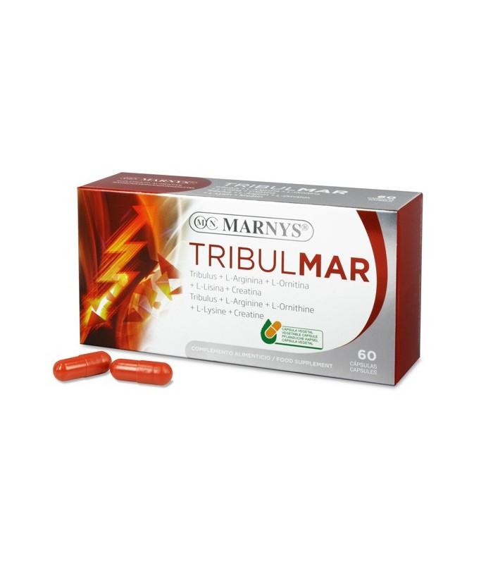 TRIBULMAR-MARNYS